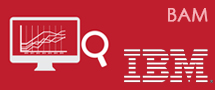 LearnChase IBM BAM Business Monitor Online Training