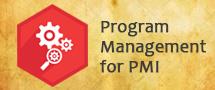 LearnChase Best Program Management for PMI Online Training