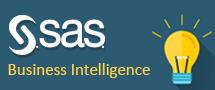 LearnChase SAS Business Intelligence Online Training