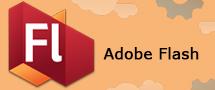Learnchase_Adobe-Flash
