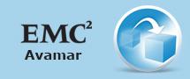 Learnchase_Best-EMC-Avamar-for-EMC