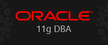 Learnchase Oracle 11g DBA Online training