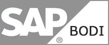 Learnchase SAP BODI Online Training
