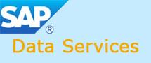 Learnchase SAP DATA SERVICE Online Training
