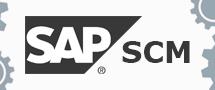 Learnchase SAP SCM Online Training