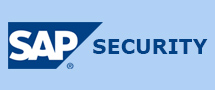 Learnchase SAP Security Online Training