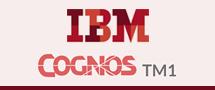 Learnchase IBM Cognos Online Training