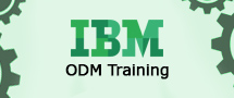 Learnchase IBM ODM Online Training