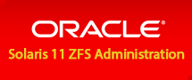 LearnChase Oracle Solaris 11 ZFS Administration Online training
