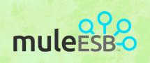 Learnchase Mule ESB Online Training