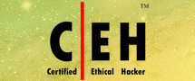 Learnchase Certified Ethical Hacker Online Training