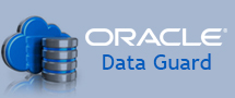 Learnchase_Oracle-Data-Guard-Training