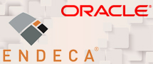 Learnchase_Oracle-Endeca-Commerce-Training