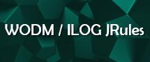 Learnchase WODM ILOG JRules Online Training