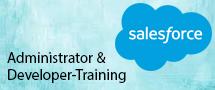 LearnChase Salesforce Administrator & Developer Online Training